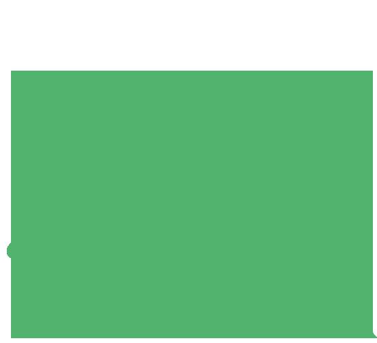 plant13